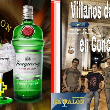 Fiesta Gin Tanqueray-Concierto Villanos del Rock